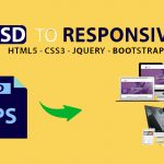 freelancer, website development, website design, mobile apps, hosting, psd to html