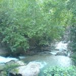 Kossba Nature